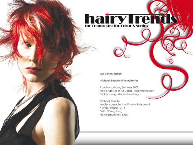 "Mediengestalter Konzeption 2006: ""HairyTrends"""